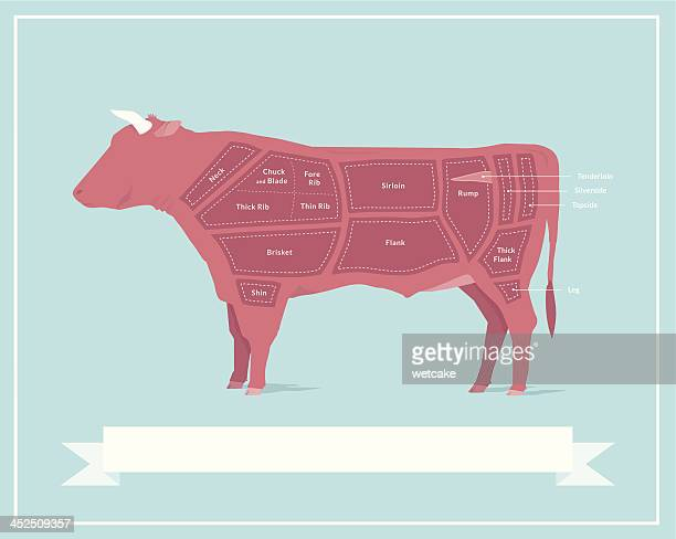 ilustraciones, imágenes clip art, dibujos animados e iconos de stock de cortes de carne de res - cortar