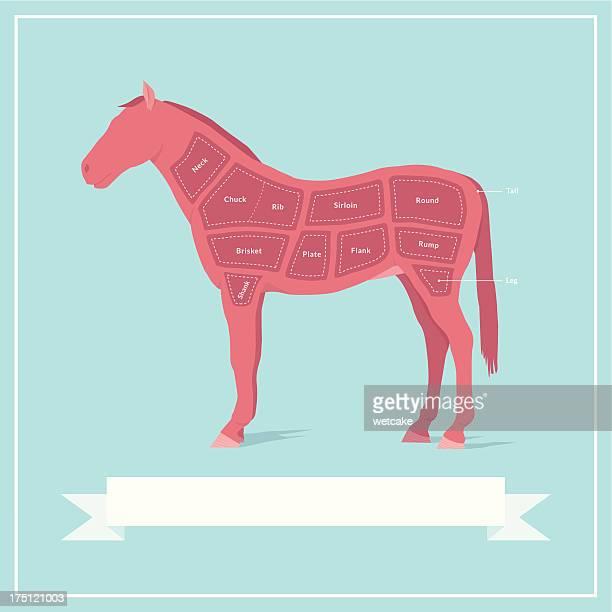 cuts of horse meat - sirloin steak stock illustrations, clip art, cartoons, & icons