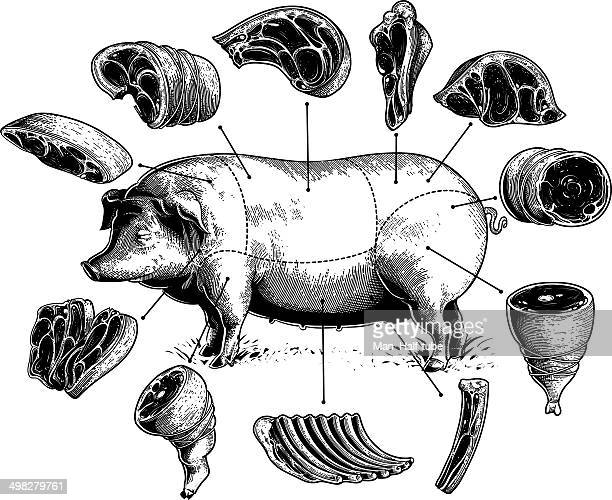 cuts of pork - cutting stock illustrations
