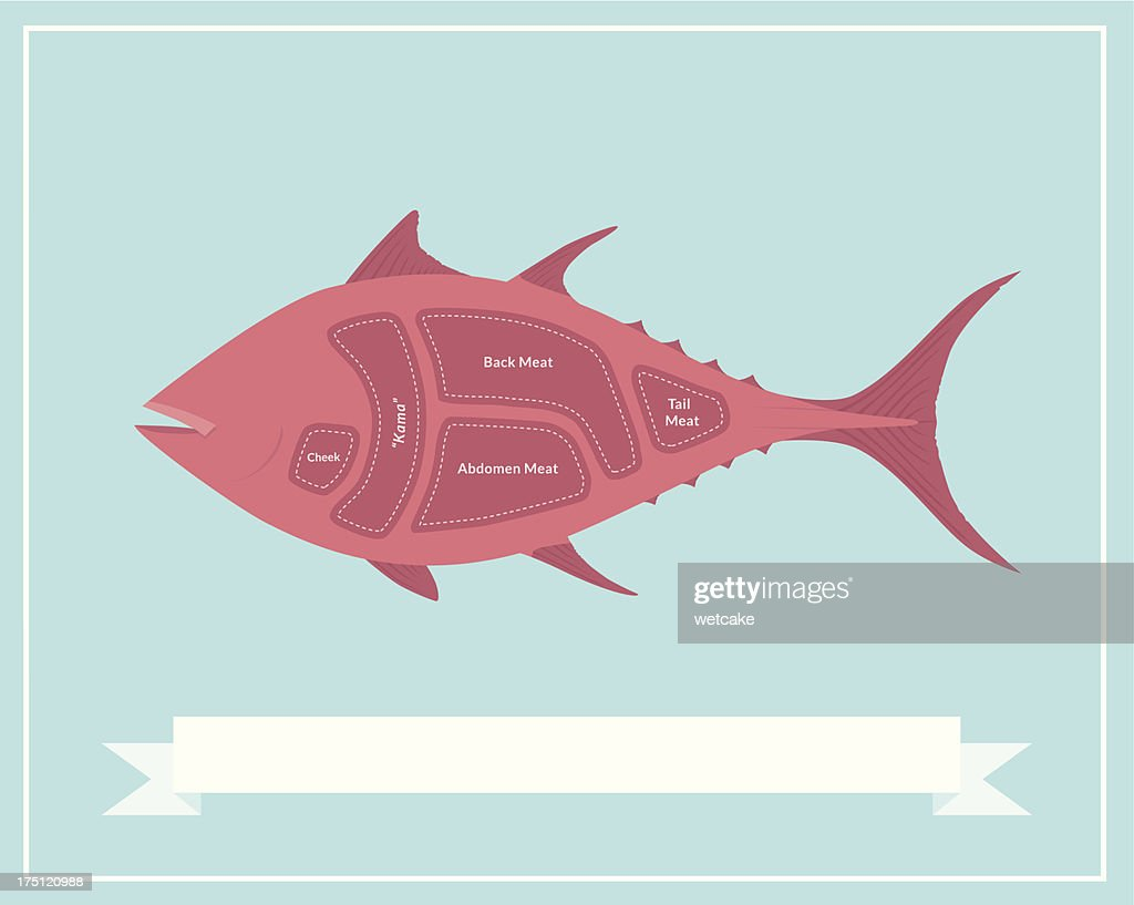 Cuts Of Tuna Sushi High Res Vector Graphic Getty Images
