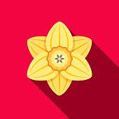 Daffodil Flat Design Gardening Icon with Side Shadow