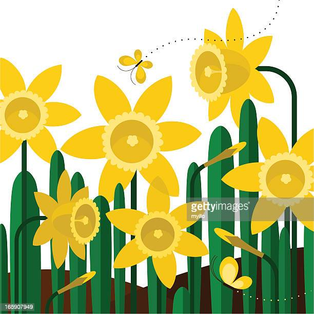 daffodils butterflies spring flower yellow garden illustration vector - daffodil stock illustrations, clip art, cartoons, & icons
