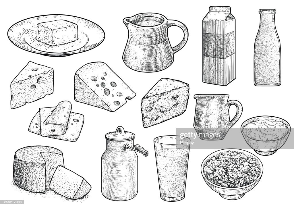 Dairy product illustration, drawing, engraving, ink, line art, vector