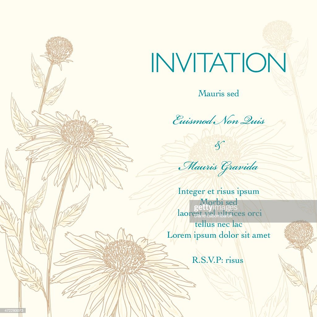 Daisies Floral Wedding Invitation Background High Res Vector
