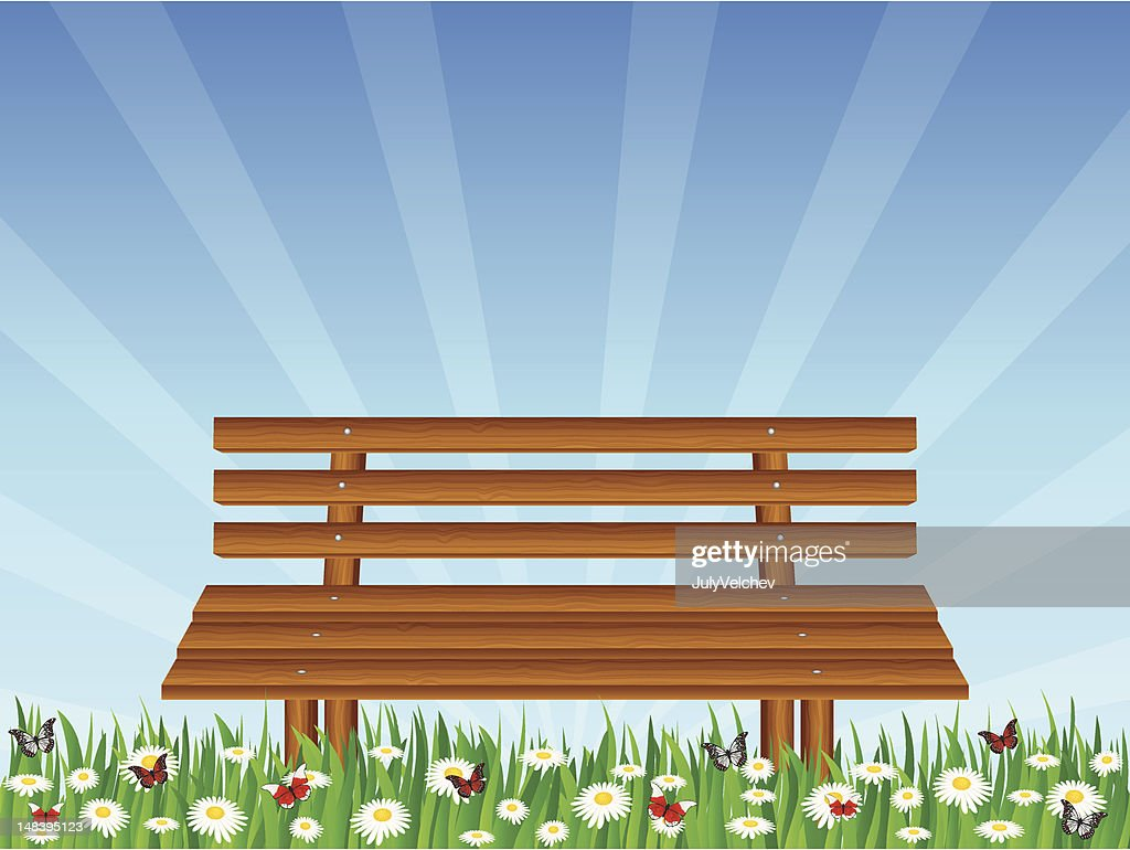 daisy field and wooden bench