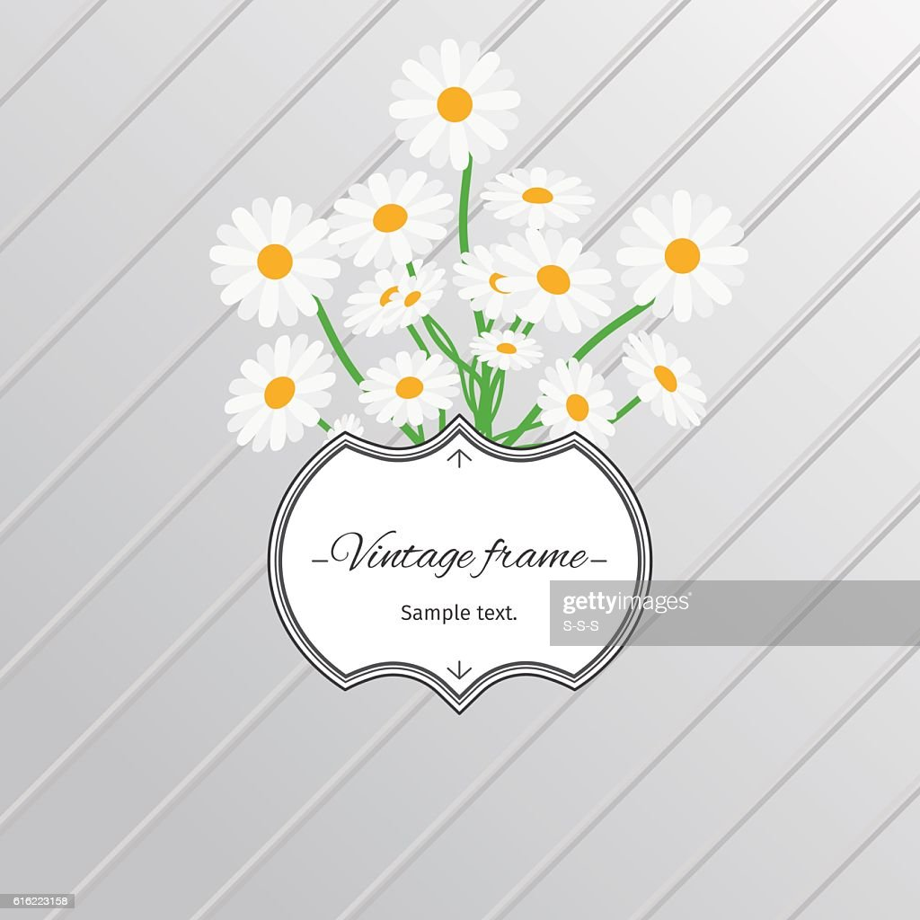 Daisy flowers and vintage label card : Vector Art