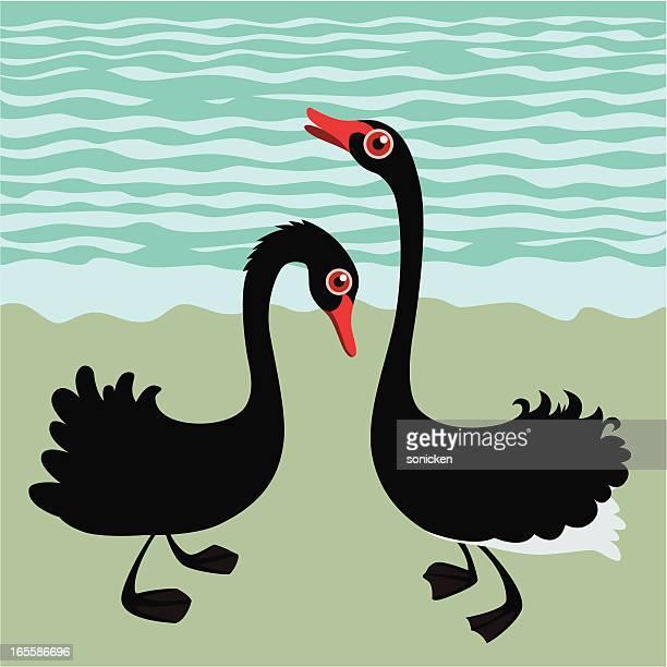 dancing black swans - webbed foot stock illustrations, clip art, cartoons, & icons
