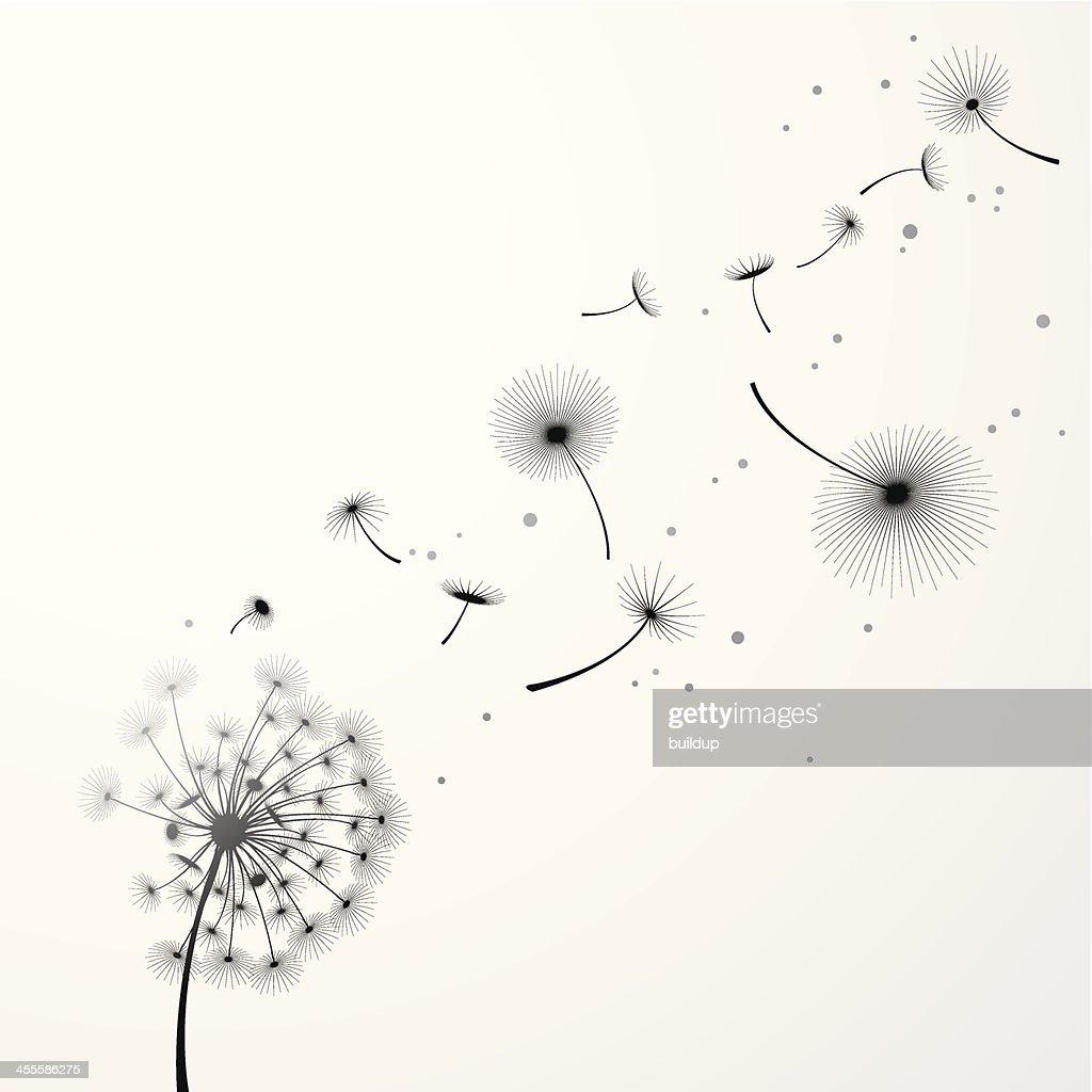 Dandelion Background : Stock Illustration