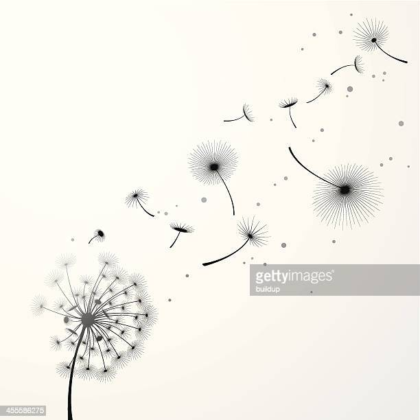 dandelion background - releasing stock illustrations
