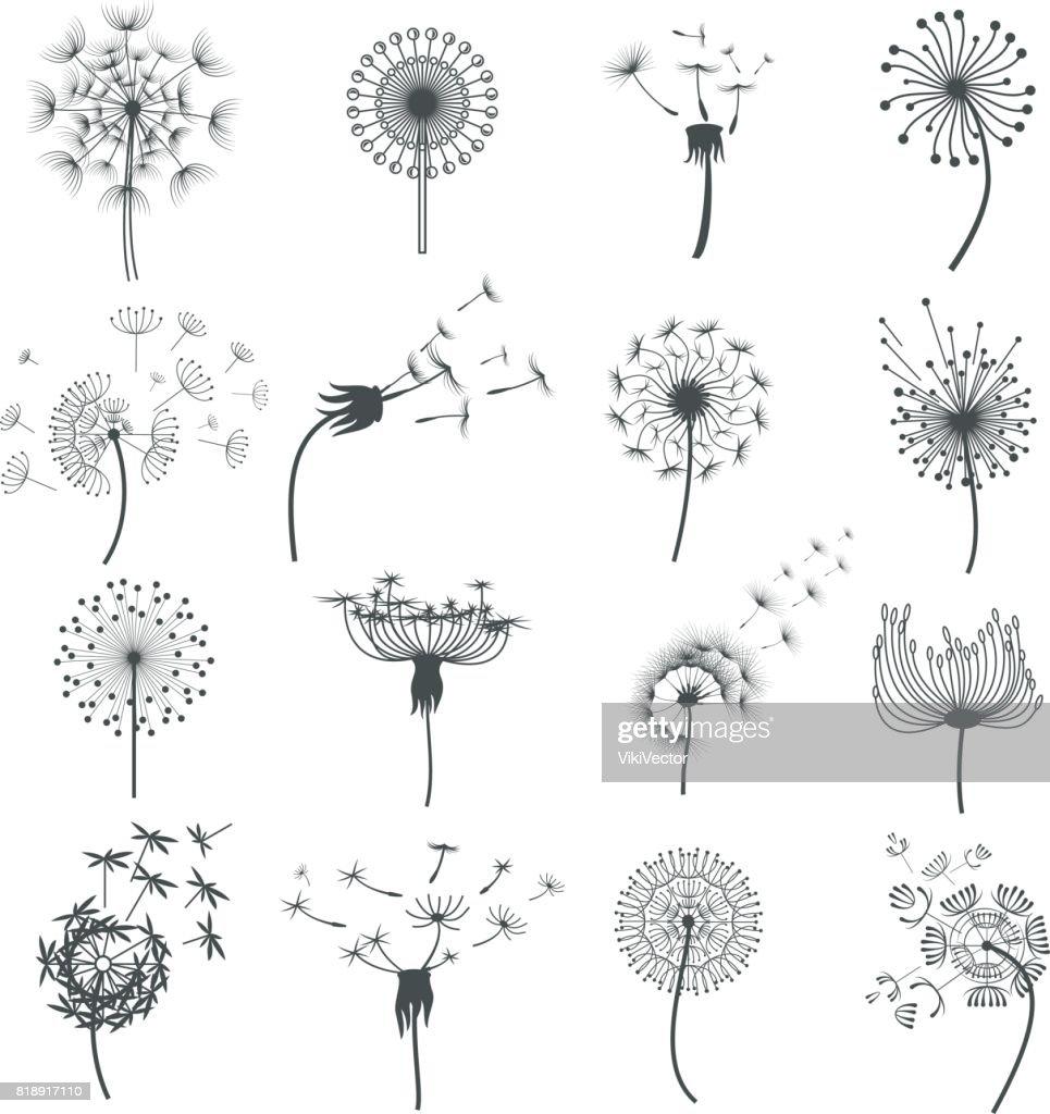 Dandelion blowball in the wind set