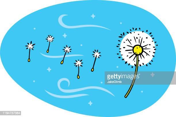 illustrations, cliparts, dessins animés et icônes de dandelion doodle - fleur de pissenlit