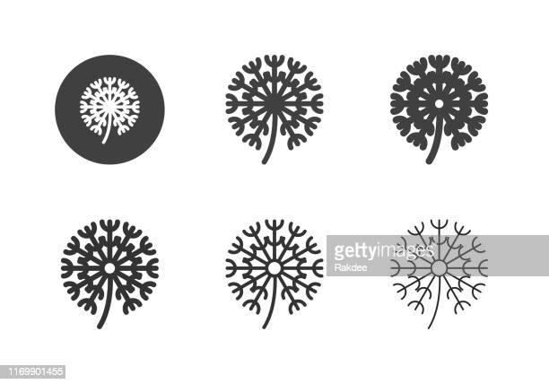 illustrations, cliparts, dessins animés et icônes de icônes de fleur de dandelion - série multi - fleur de pissenlit