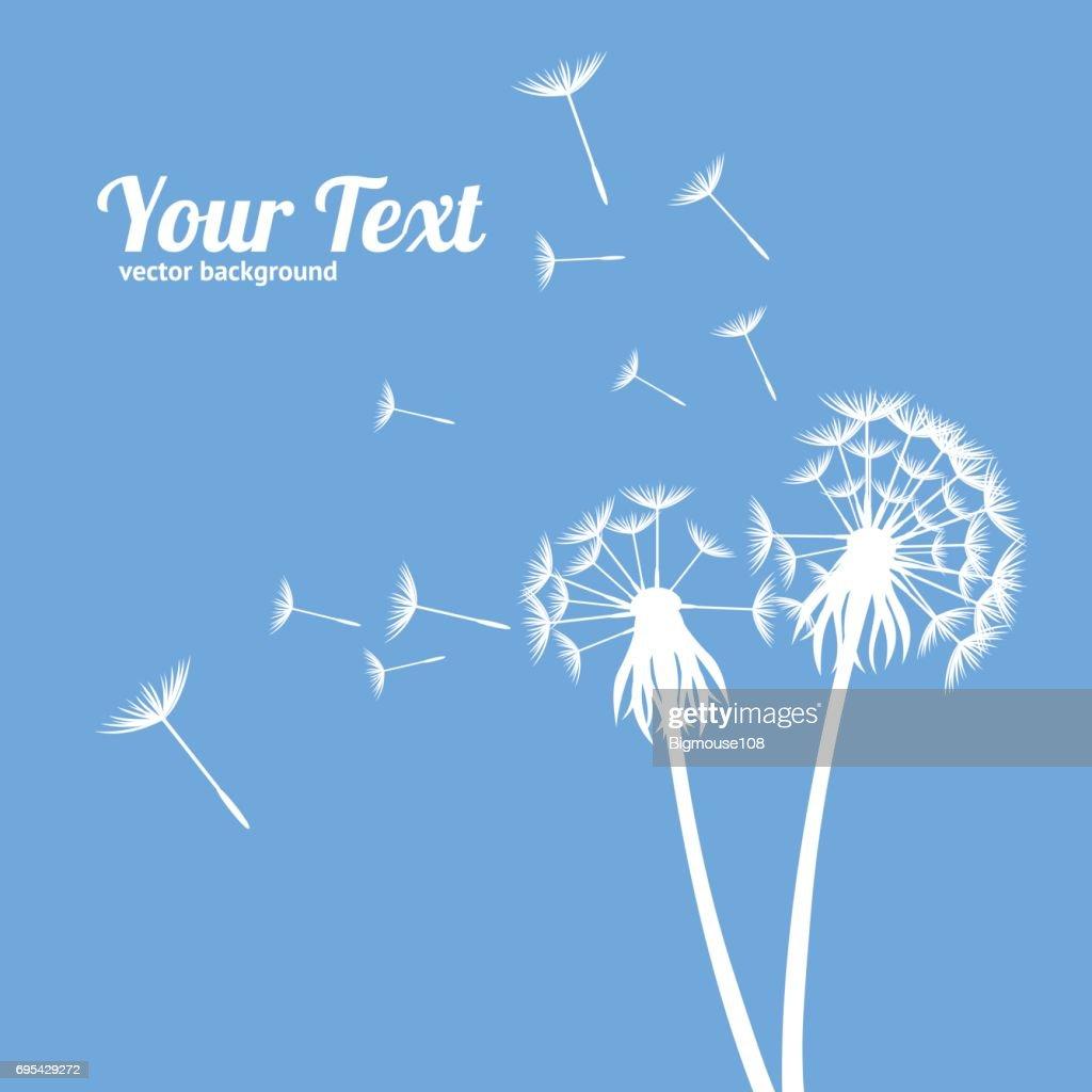 Dandelion Fluffy Flower and Seeds Card. Vector