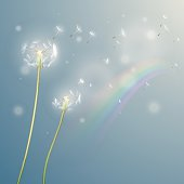 Dandelion illustration with rainbow