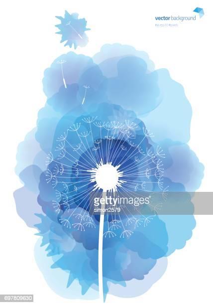 illustrations, cliparts, dessins animés et icônes de modèle de pissenlit avec aquarelle fond texturé - fleur de pissenlit