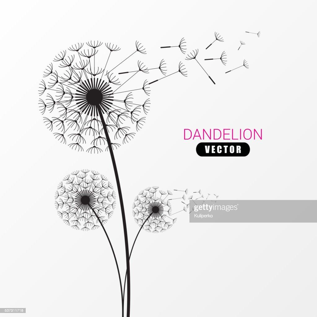 Dandelion silhouette. Flying dandelion buds. Modern design. Vector