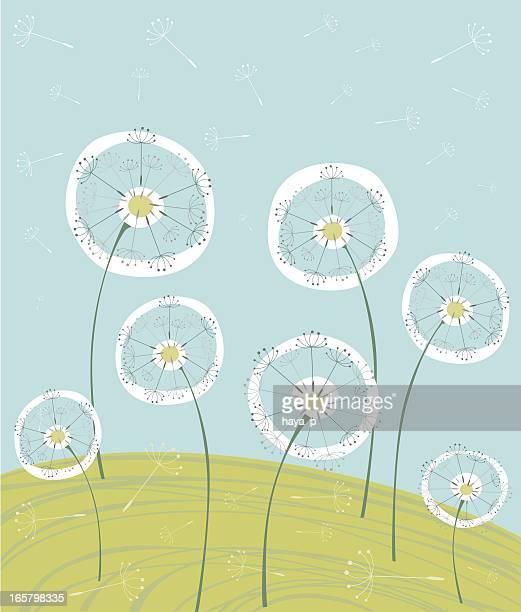 illustrations, cliparts, dessins animés et icônes de dandelions sur prairie d'été - fleur de pissenlit
