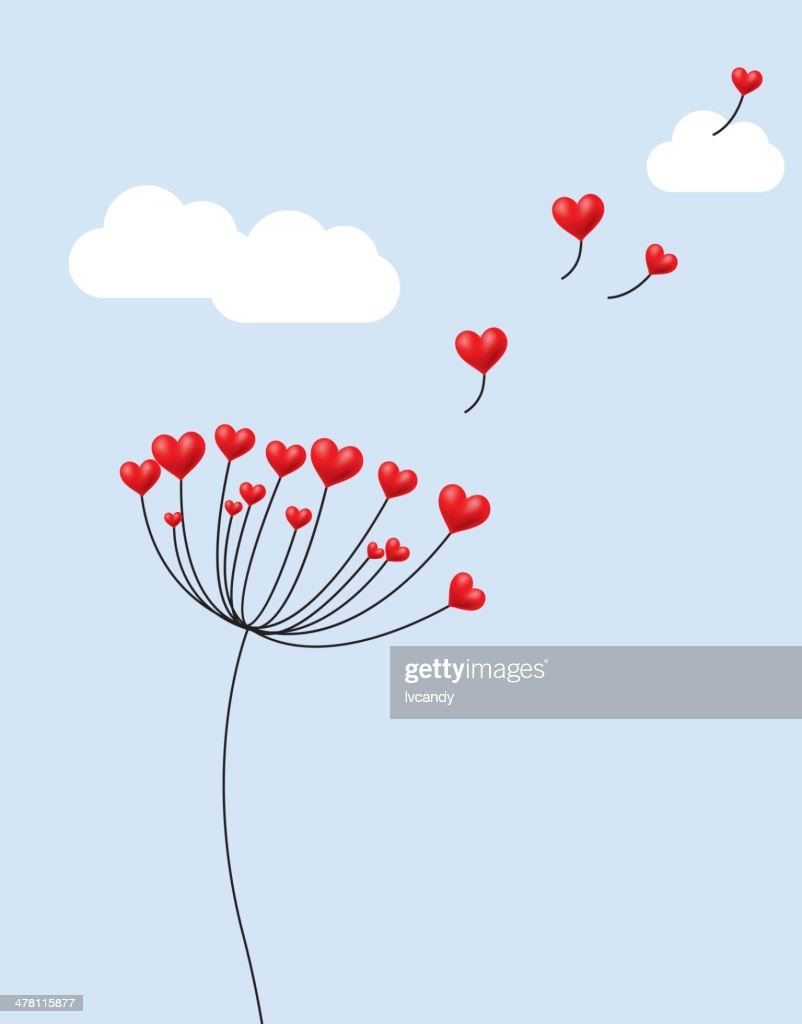 Dandelion's seeds are red heart