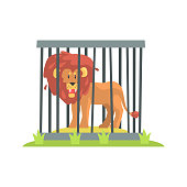 Dangerous Lion With Big Mane Standing Behind The Cage