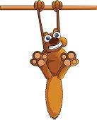 Dangling Squirrel Cartoon