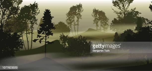 Dark forest with multiple tree silhouettes