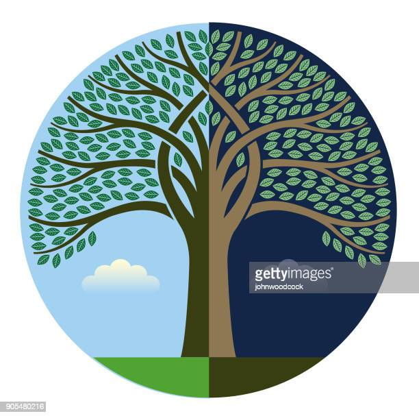 Day and night intertwined tree illustration