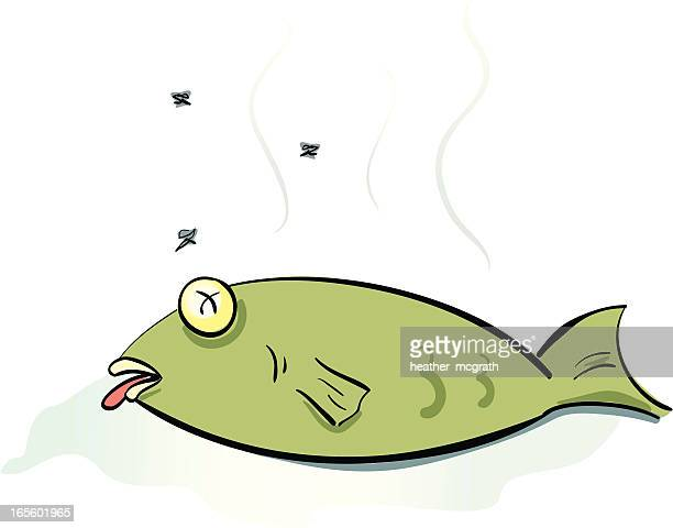 dead fish - rot stock illustrations