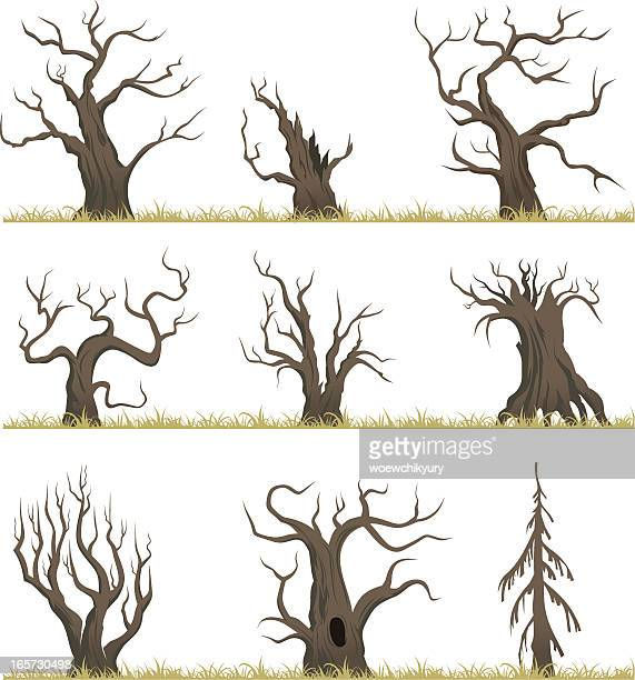 dead forest - bare tree stock illustrations