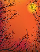 Dead Trees Against an Orange Sky