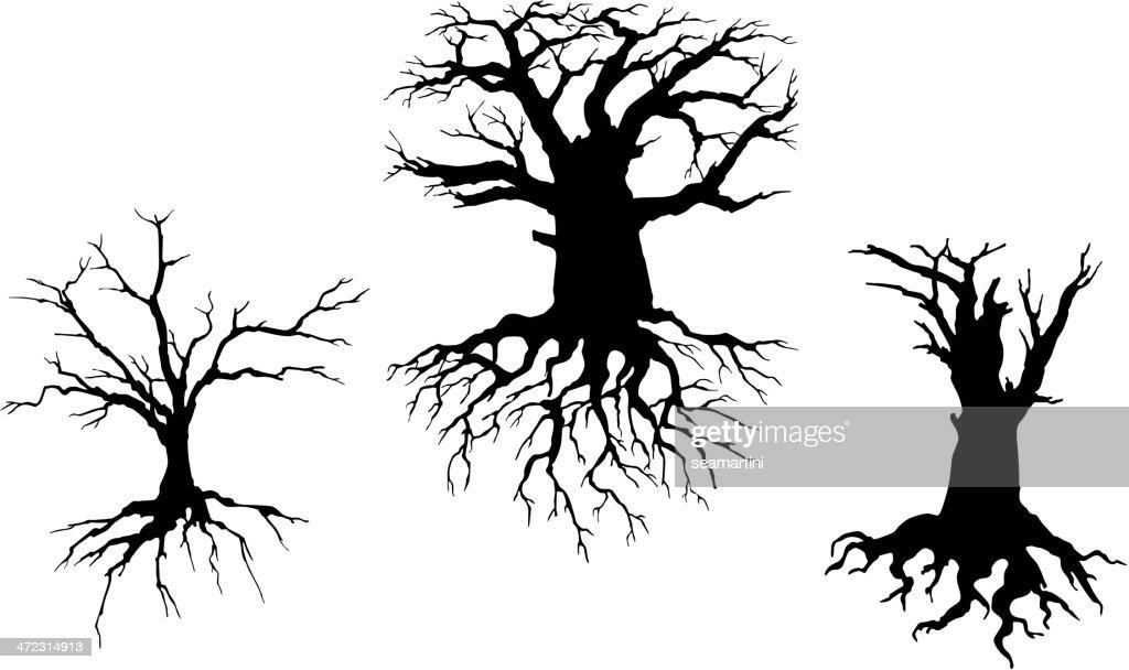 Dead trees for ecology design