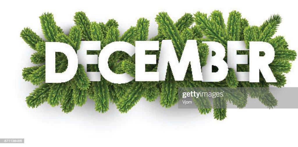 December banner with fir branches.