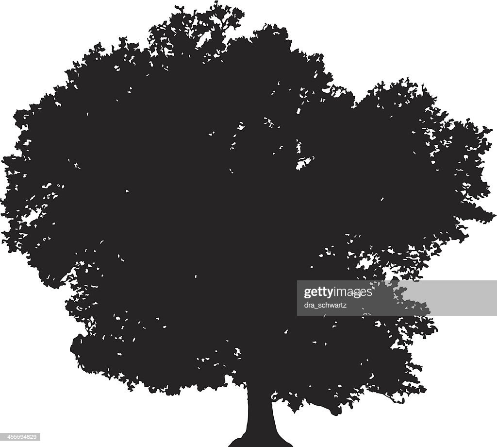 Deciduous tree silhouette vector