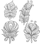 Decorative feathers. Tribal feathers with ornament. Black and white hand drawn doodle for adult coloring book