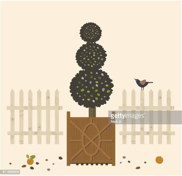 ilustrações de stock, clip art, desenhos animados e ícones de decorative garden tree in pots and bird. potted plant. - laranjeira