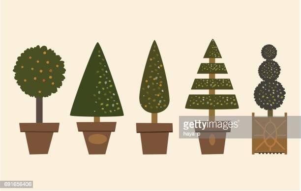 鍋で装飾的な庭の木。鉢植えの植物。 - トピアリー点のイラスト素材/クリップアート素材/マンガ素材/アイコン素材