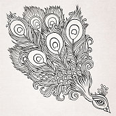 Decorative hand drawn peacock