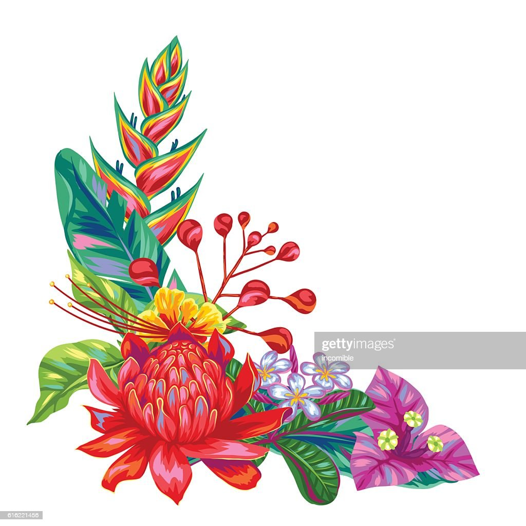 Decorative object with Thailand flowers. Tropical multicolor plants, leaves and : ベクトルアート