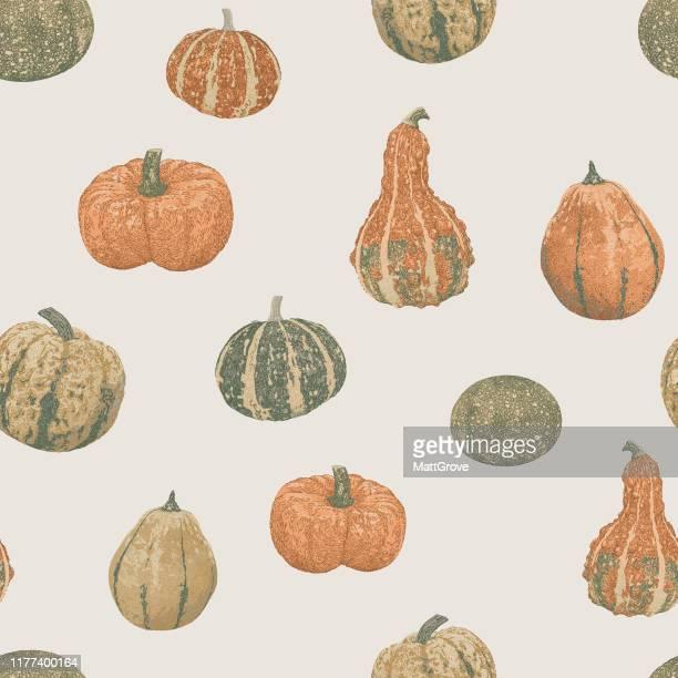 decorative pumpkin vegetable vegan repeat - marrom stock illustrations