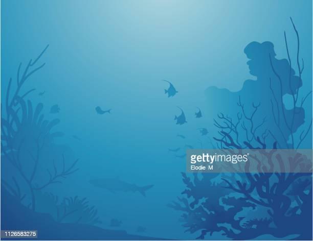 ilustraciones, imágenes clip art, dibujos animados e iconos de stock de fondos de alta mar / decoración sous la mer - submarino debajo del agua