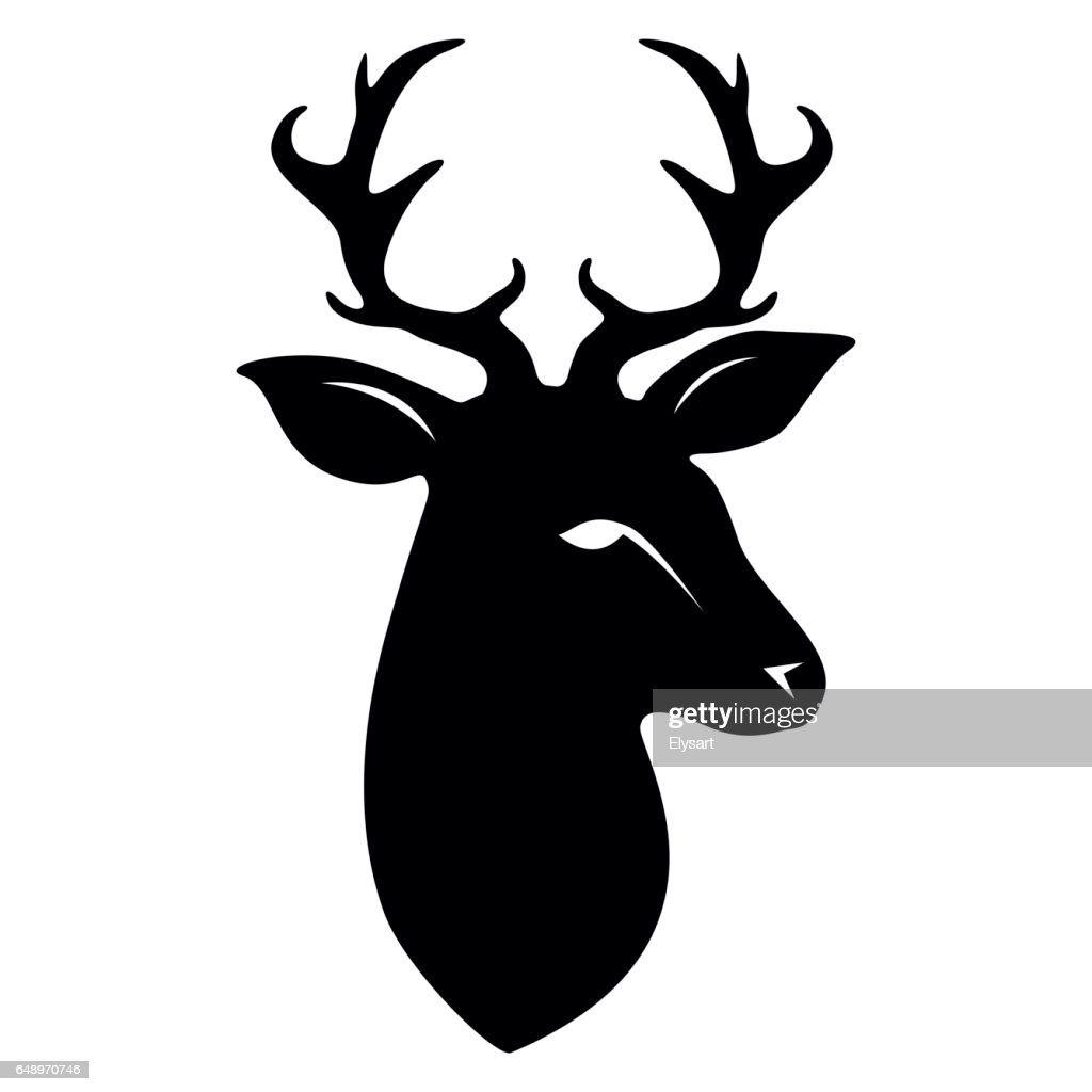 Deer head isolated on white
