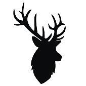 deer, portrait