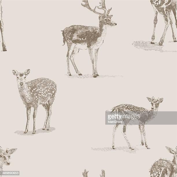 illustrations, cliparts, dessins animés et icônes de deer répétez le motif - biche