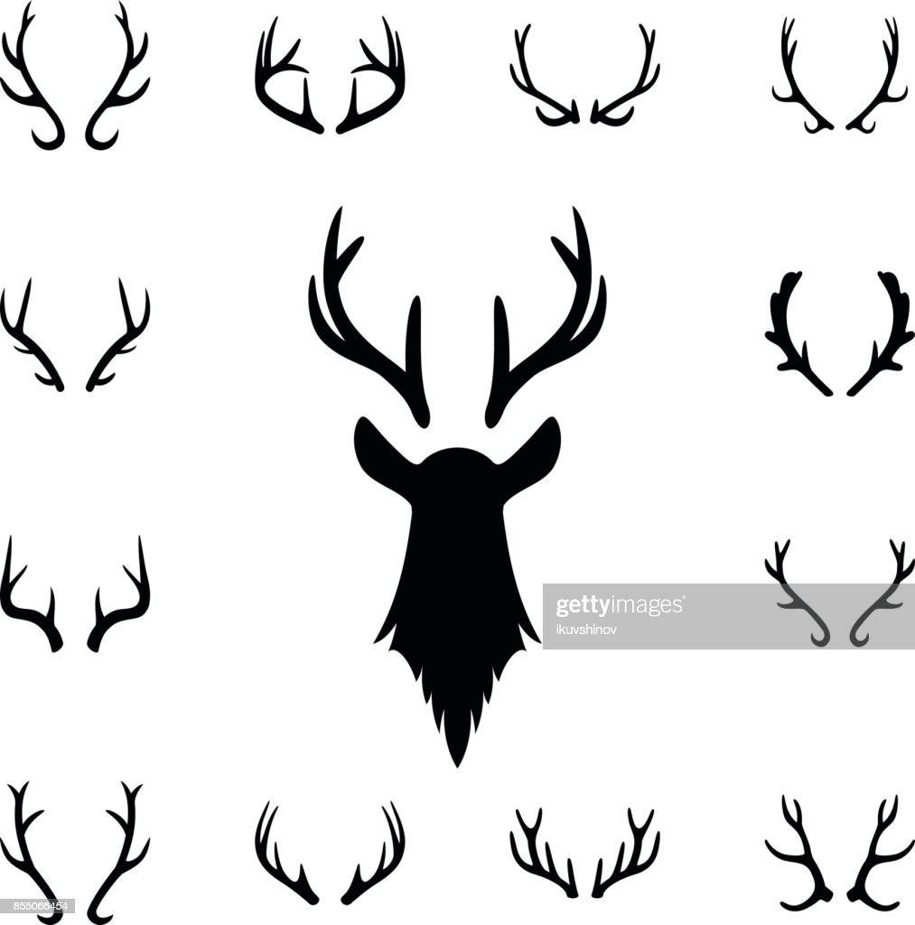 Deer s head and antlers set. Design elements of deer