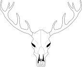 Deer skull line art vector illustration