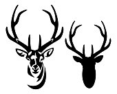 deer stag with big antlers black and white vector portrait