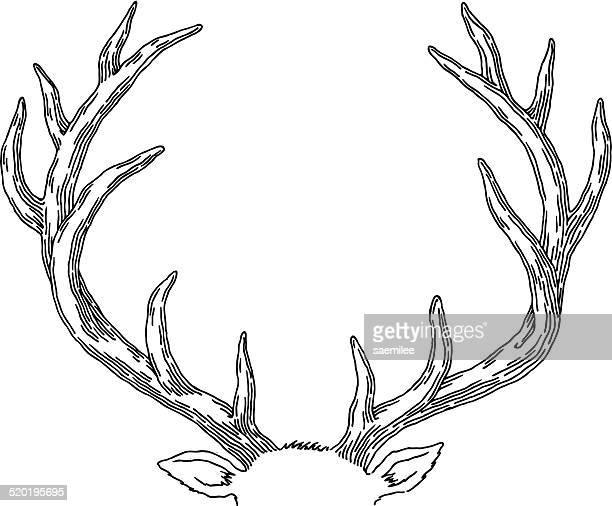 鹿 - 角点のイラスト素材/クリップアート素材/マンガ素材/アイコン素材