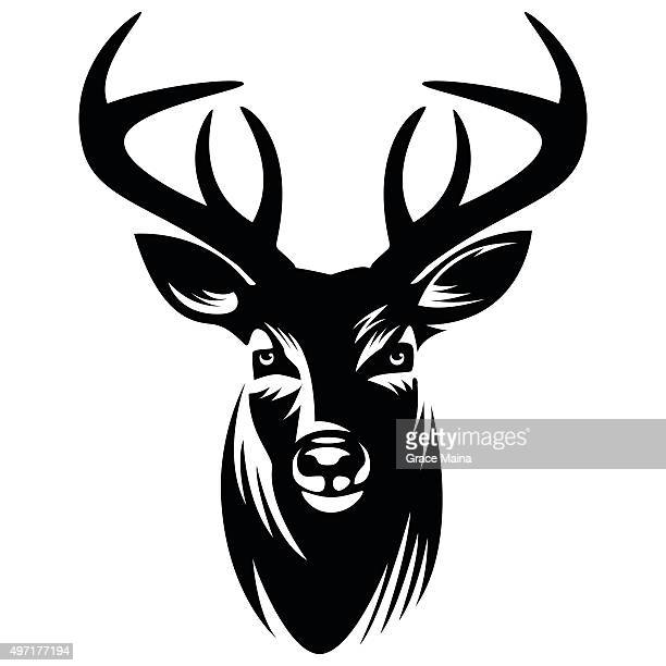 deer vector illustration - vector - bucks stock illustrations
