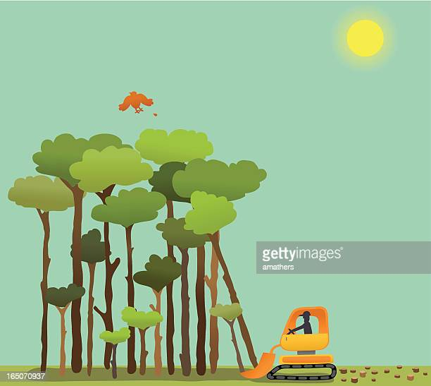 deforestation - deforestation stock illustrations