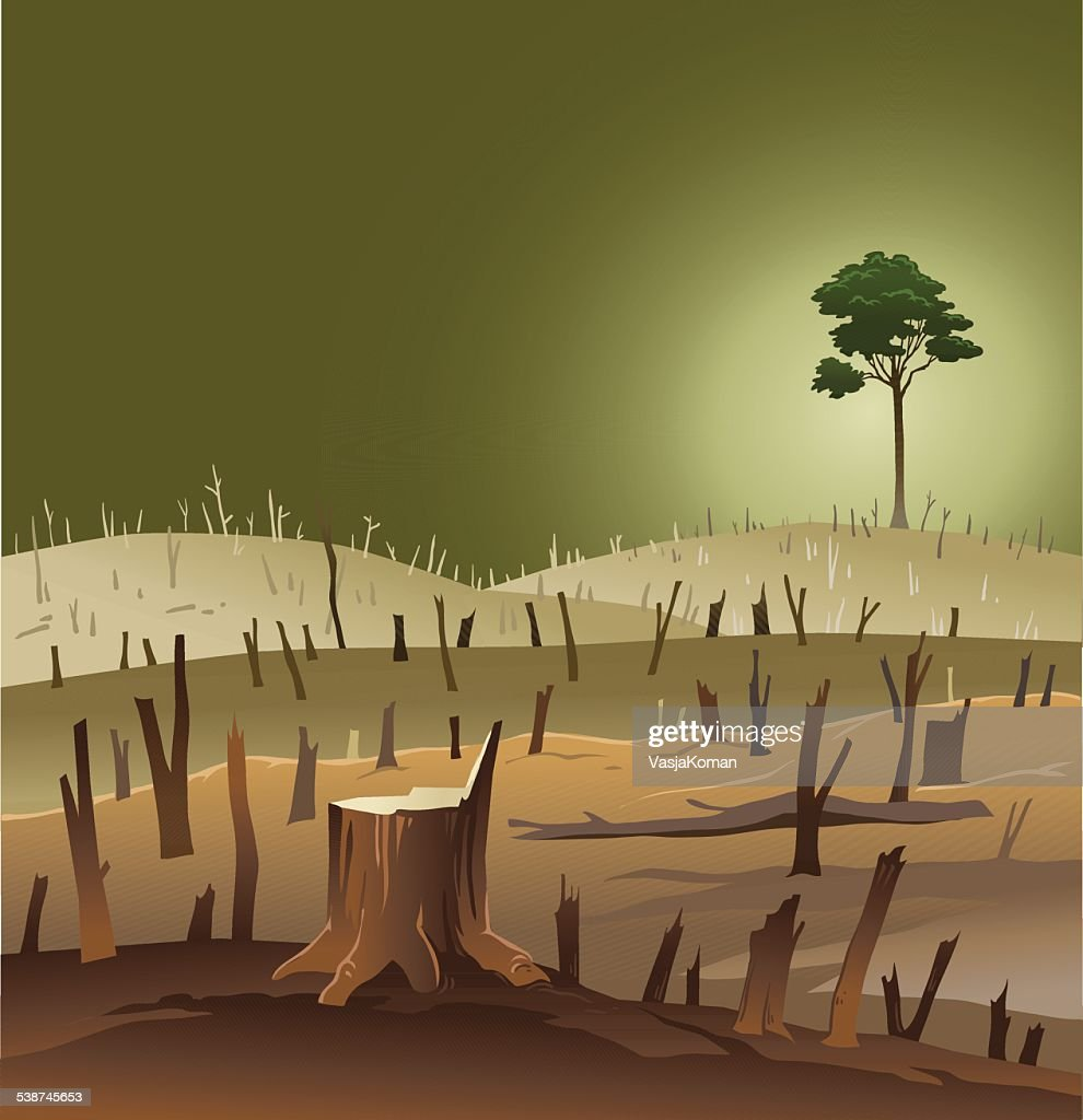 Deforestation - Wasteland With a Lonely Tree