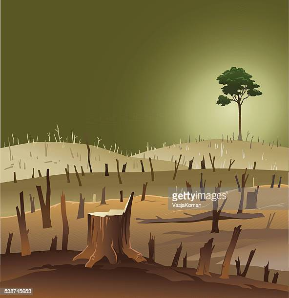 deforestation - wasteland with a lonely tree - destruction stock illustrations
